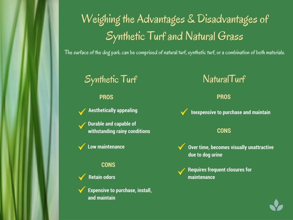 Synthetic versus Natural Turf (JPG)